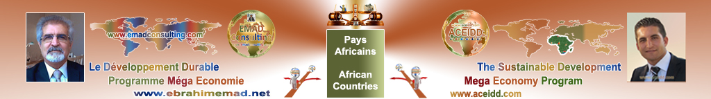 EMAD Consulting and ACEIDD, Practices of the International in Africa