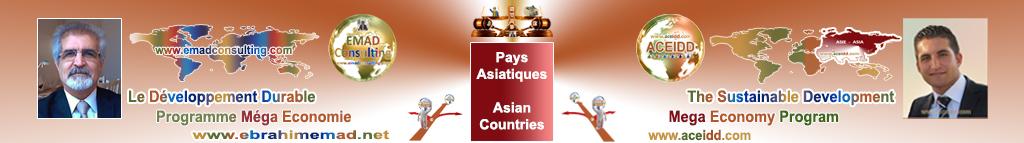 EMAD Consulting et ACEIDD, Pratiques de l'International en Asie